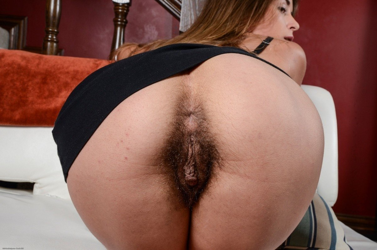 Hairy Ass Pic